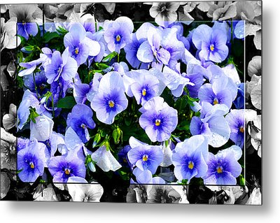Burst Of Blue - B Metal Print