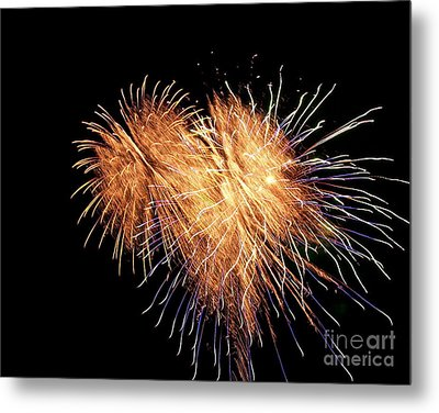 Metal Print featuring the photograph Bursting With Love by Eve Spring