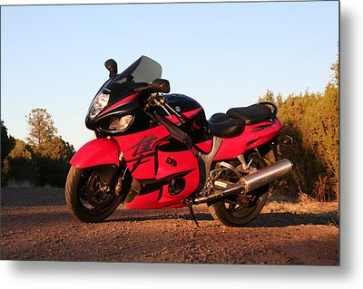Metal Print featuring the photograph Busa by David S Reynolds