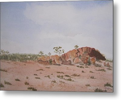 Bush Land Australia Metal Print