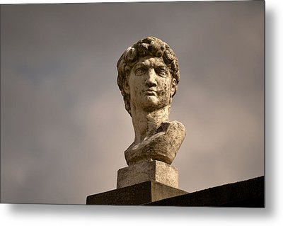 Metal Print featuring the photograph Bust Of Apollo by Nadalyn Larsen