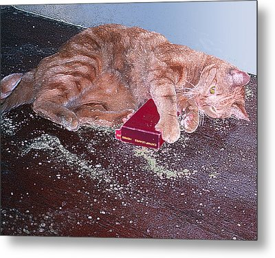 Buster Slopped-out On Catnip Metal Print