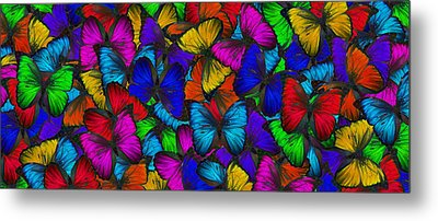 Metal Print featuring the photograph Butterflies In Flight Panorama by Kyle Hanson