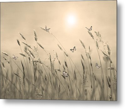 Metal Print featuring the digital art Butterflies by Nina Bradica