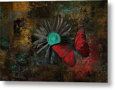 Butterfly And Daisy - 09at2b Metal Print