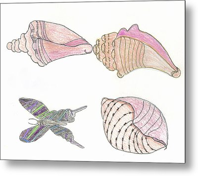 Butterfly And Seashells Metal Print by Helen Holden-Gladsky