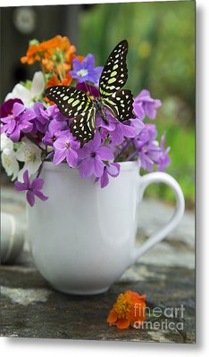 Butterfly And Wildflowers Metal Print by Edward Fielding
