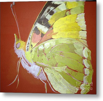 Metal Print featuring the painting Butterfly Basic In Work by Art Ina Pavelescu