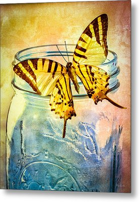 Butterfly Blue Glass Jar Metal Print by Bob Orsillo