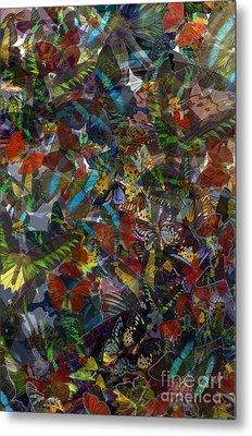 Metal Print featuring the photograph Butterfly Collage by Robert Meanor