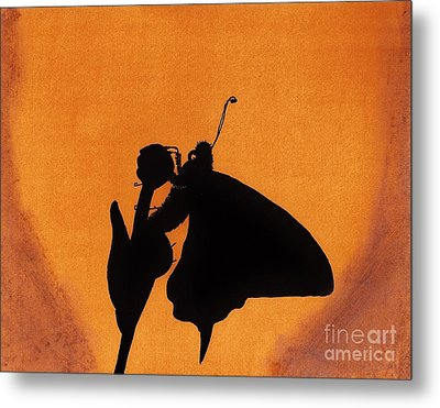 Metal Print featuring the drawing Butterfly by D Hackett