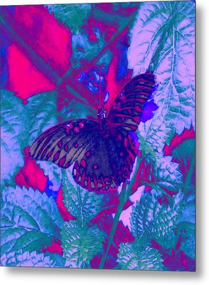 Metal Print featuring the painting Butterfly  by David Mckinney