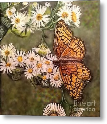 Butterfly Delight Metal Print by Kimberlee Baxter