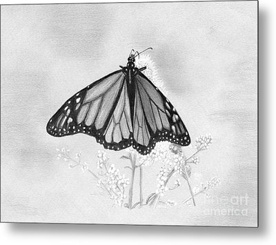 Butterfly Metal Print by Denise Deiloh