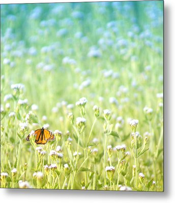 Butterfly Dreams Metal Print