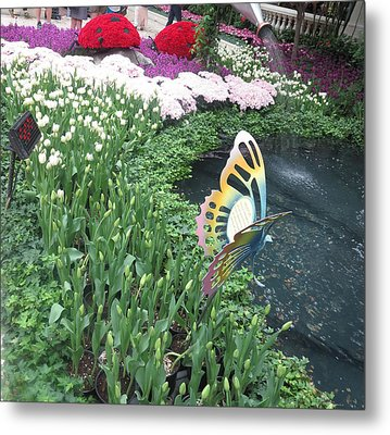 Metal Print featuring the photograph Butterfly Garden Ladybug Flowers Green Theme by Navin Joshi