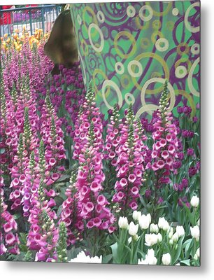 Metal Print featuring the photograph Butterfly Garden Purple White Flowers Painted Wall by Navin Joshi