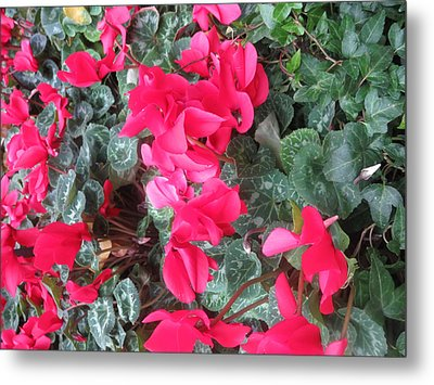 Metal Print featuring the photograph Butterfly Garden Red Exotic Flowers Las Vegas by Navin Joshi