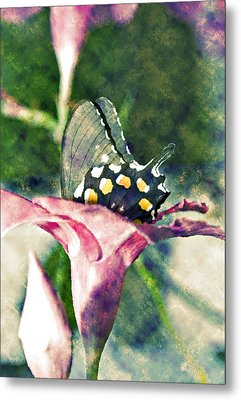 Metal Print featuring the photograph Butterfly In Flower by Susan Leggett