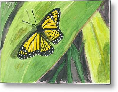 Metal Print featuring the painting Butterfly In Vermont Corn Field by Donna Walsh