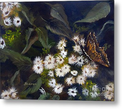 Butterfly Kisses Metal Print by Sharon Burger