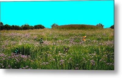 Butterfly Meadow Metal Print by Larry Trupp