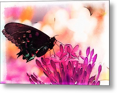 Breathing Into The Sunlight Metal Print