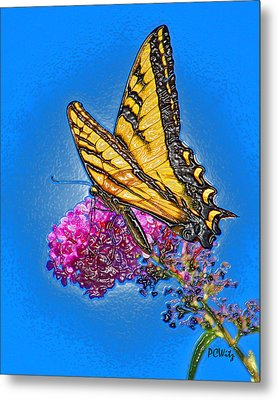Butterfly Metal Print by Patrick Witz