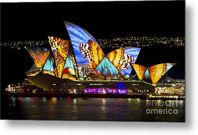 Butterfly Sails Metal Print