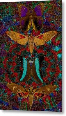 Solar Butterfly Metal Print