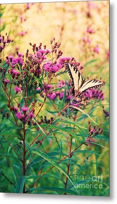 Metal Print featuring the painting Butterfly Wildflower by Eric  Schiabor
