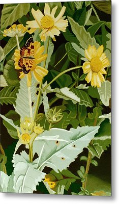 Butterfly Yellow  Metal Print by Tanya Provines