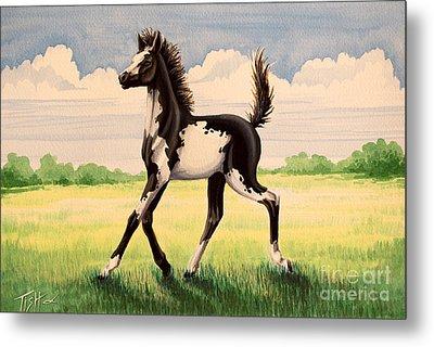 Bw Painted Foal Metal Print by Tish Wynne