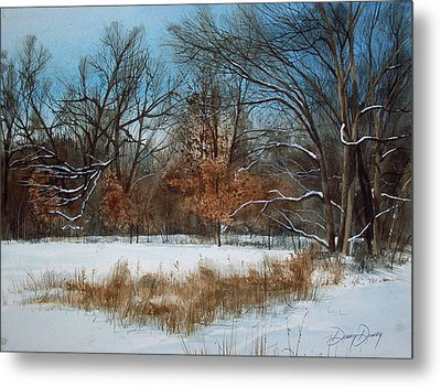 By Rattlesnake Creek Metal Print by Denny Dowdy
