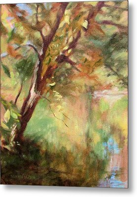 By The Greenway In Autumn- Along The Roanoke River Metal Print by Bonnie Mason
