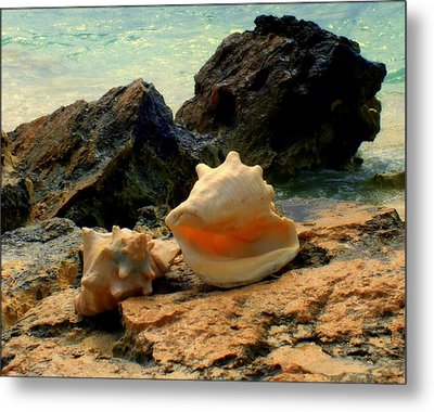 By The Sea Metal Print by Karen Wiles