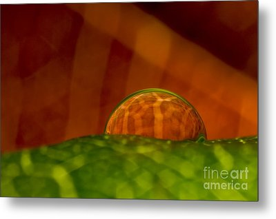 C Ribet Orbscape In The Belly Of Fury Metal Print