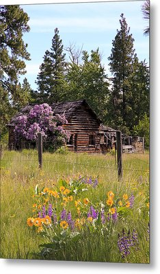 Cabin And Wildflowers Metal Print by Athena Mckinzie