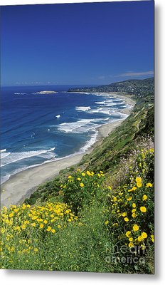 Cachagua Coastline Chile Metal Print by Craig Lovell
