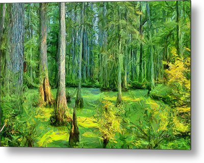 Cache River Swamp Metal Print by Michael Flood