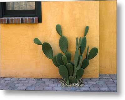 Cactus And Yellow Wall Metal Print by Carol Leigh