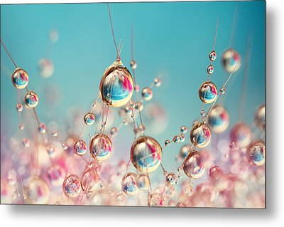 Metal Print featuring the photograph Cactus Candy by Sharon Johnstone