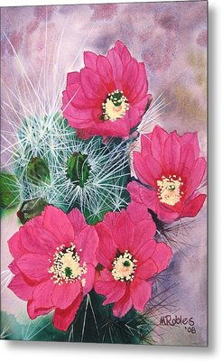 Cactus Flowers I Metal Print by Mike Robles