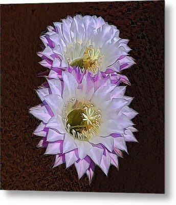 Cactus Flowers Metal Print by Pamela Walton