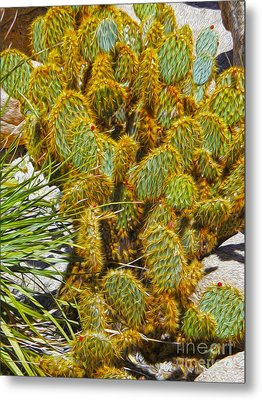 Cactus Metal Print by Gregory Dyer