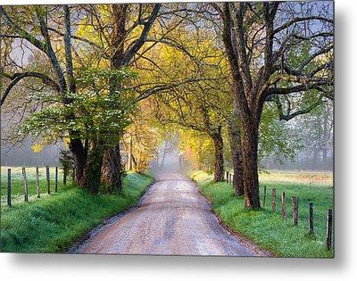 Cades Cove Great Smoky Mountains National Park - Sparks Lane Metal Print