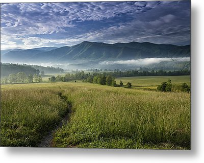 Cades Cove Meadow Metal Print