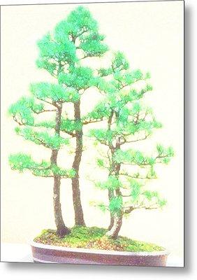 Caitlin Elm Bonsai Tree Metal Print