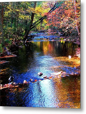 Metal Print featuring the photograph Caledonia In Autumn by Angela Davies