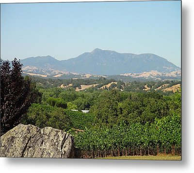 Metal Print featuring the photograph Cali View by Shawn Marlow